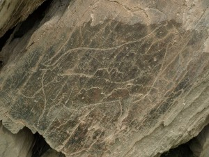 Rock carving at Castelo Melhor near Foz Coa